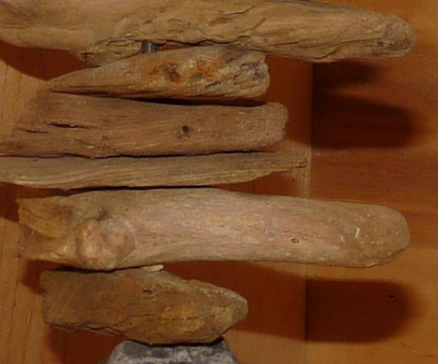drift-wood-art_halle-frank-michael-maennicke2